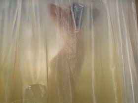 Лили Салливан секси - Девушка грёз (2020)