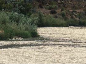 Дженьюэри Джонс голая — Пресная вода (2013) #2